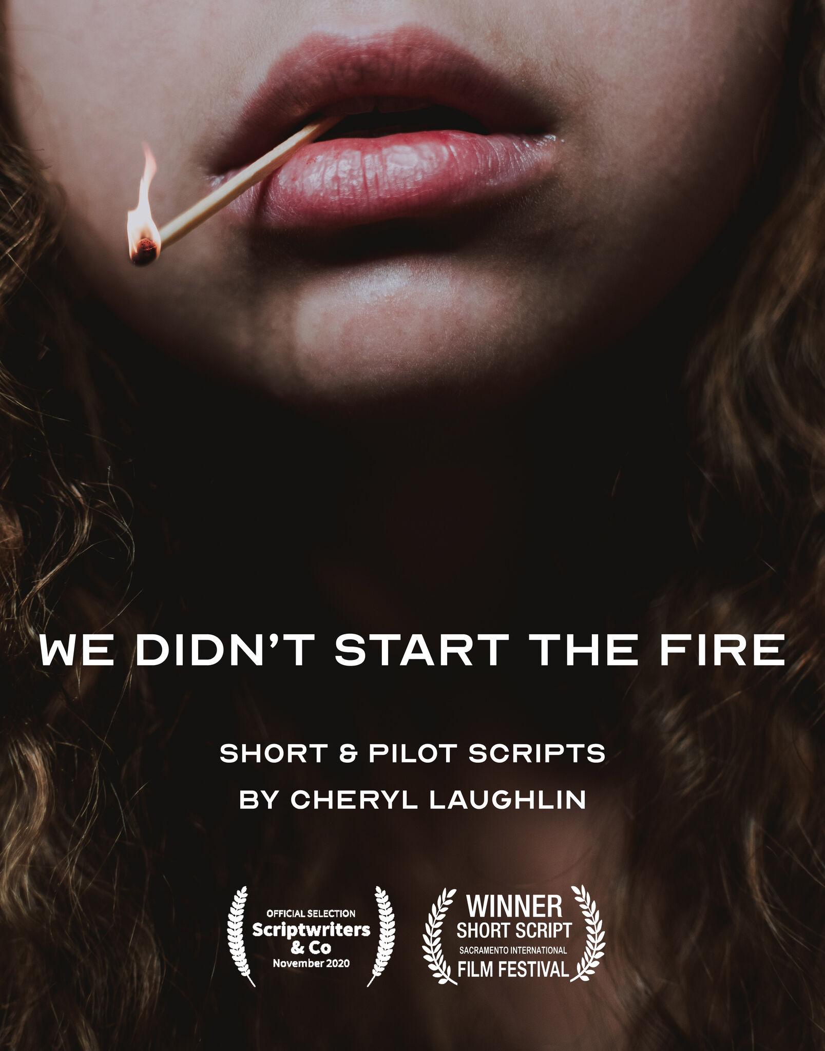 WE DIDN'T START THE FIRE - SHORT & PILOT