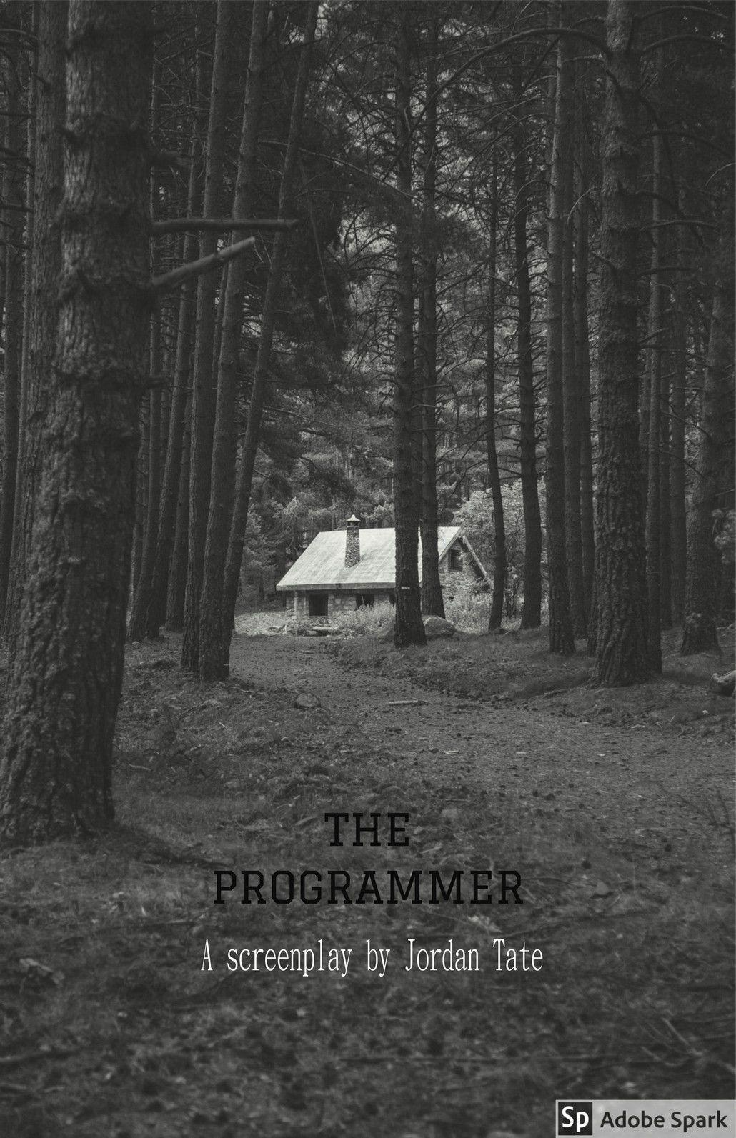 THE PROGRAMMER